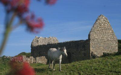 Teampall Chiaráin – Aran Island